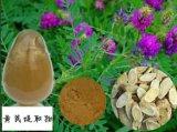 Extracto de Astragalus de Alta Qualidade para Alimentos e Suplemento