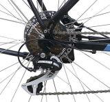 Stadt-Typ elektrisches Fahrrad mit hinterer Träger-Batterie (TDB16Z)
