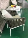 Aluminiumrahmen-Riemen gesponnener Stuhl und Tee-Tisch-Garten-im Freienmöbel (TG-6006)