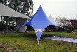 Постоянный Белую Звезду тени Палатка для фестиваля диаметром 14m 100 человек местный гость