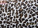 Impressão de leopardo Velboa (HZS--00124)