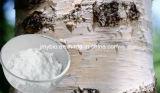 Extrait Betulin 50%-98%, anti-VIH d'écorce de bouleau blanc