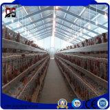 Exploração agrícola e HOME de galinha da construção de aço dos edifícios do metal