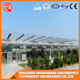 Commercial Multi - Span Garden Glass Greenhouse