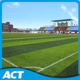 フットボールまたはサッカー競技場(Y50)のための人工的な草