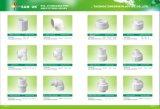 Standard femminile di Wirh filettato PVC BS del sindacato del PVC dei montaggi