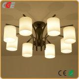 Qualitäts-moderne einfache Art-hängende Lampe, die LED-Deckenleuchte hängt