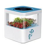 Завод-Основанный очиститель воздуха с фильтром HEPA, активированным углем и коробкой стерилизации