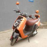 800W 1000W LED duplo Niu City Road Motocicleta Moto Electrica Motociclo Eléctrico (big bin)