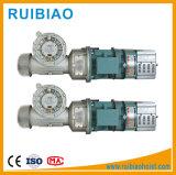 Motores eléctricos del alzamiento de la construcción (motor eléctrico del dínamo del motor de 11kw 15kw 18kw)