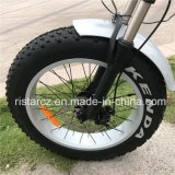 Foldable Fat Tire Electric Bike (RSEB-507)