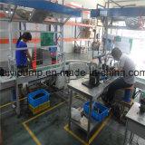 Bezirk-angemessener bester Preis ein Class/a bewertete die Umwälzpumpe, die in China hergestellt wurde