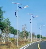 IP65 알루미늄 가벼운 바디 4m-12m 태양 옥외 빛