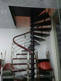 Лестницы нутряного малого чердака стильные минималист спиральн