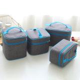 Sacchetto del pranzo isolato sacchetto più freddo per la casella di pranzo 10201