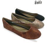 بنات نساء محترفة صاحب مصنع [بلّت شو] تمويه فرعة حذاء