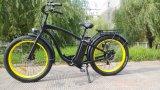 1000W山の販売のための電気自転車の脂肪質のタイヤの電気バイク