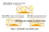 Coxim Multifunctional da sustentação lombar para o relevo do quadril, da ciática e de dor comum