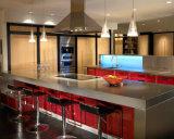 A mobília a mais atrasada da cozinha da laca do projeto