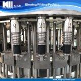 Проект горячей минеральной вода сбывания разливая по бутылкам от a к z