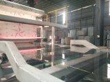 Auvent feuille Soild dépoli matériau de construction en polycarbonate