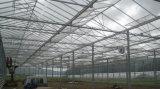 温室のための4mmの白い塗られたガラス
