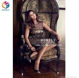2017脚の熱い販売の安く古典的な高貴な王および女王の椅子Hly-Sf53
