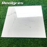 Фошань Porcelanato Hormogeneoud/Фошань плитки/Floor Gres керамическая плитка