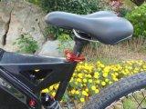 2017 Ebike最新の安い1000W 48Vの大人の電気バイク