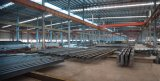 전 설계된 가벼운 강철 구조물 작업장