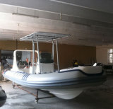 6.2M Liya/20pés Hypalon barco inflável de Casco rígido para venda