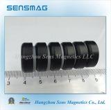 Aimant magnétique permanent de bac de ferrite avec RoHS