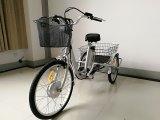 Pedelec 큰 크기 전기 세발자전거