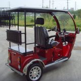 Motocicleta de cuatro ruedas de tres ruedas para discapacitados