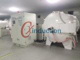Fornace della grafite di vuoto della pellicola della grafite di induzione/trattamento termico