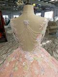 夜会服の裸のピンクのボートの首の球のイブニング・ドレス