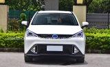 Gloednieuwe Elektrische Auto SUV met Hoge snelheid