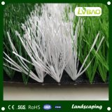 Erba artificiale del tappeto erboso di calcio