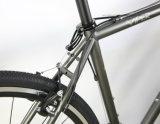 2400-16 velocidade Superlight Crmoly que compete a víbora da bicicleta de /Cyclocross da bicicleta da estrada (CX4)