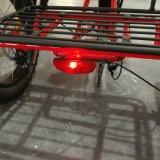 Китай производитель дальнего радиуса шин электрический Trike жира