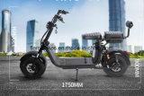 電気1500Wはリチウム電池が付いているスクーターを立てる