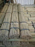 El bambú natural de Guangdong con el plástico protege