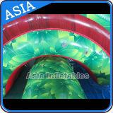Sosta gonfiabile dell'acqua con il raggruppamento e la trasparenza, sosta chiara gonfiabile dell'acqua