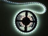 방수 백색 온난한 백색 파란 유연한 가벼운 꼭지 LED 지구