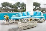 /Rattan esterno/sofà HS 1803 del rattan della mobilia hotel Patio//del giardino