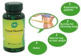 Потеря веса микстуры капсулы Hca выдержки Cambogia Garcinia формулы OEM травяная