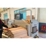 [سليد ووود] خشبيّة أسلوب عامة - يجعل أثاث لازم ([س-02])