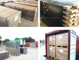 De houten Plastic Decoratieve Materialen van de Muur WPC van Vloeren Openlucht/Houten PE Bekleding