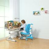 Los niños ensamblan el vector del estudio y los muebles de la silla