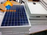 Comitato solare del silicone policristallino potente 310W della Cina per il sistema solare